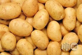 Potato Farming Manual