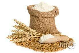 Wheat Flour Production Manual | Meals & Drinks for sale in Abuja (FCT) State, Kuje