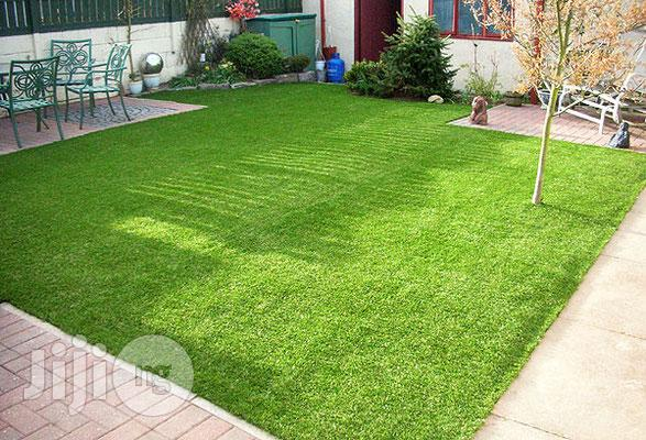 High Quality & Strong Artificial Green Grass Carpet For Sale.