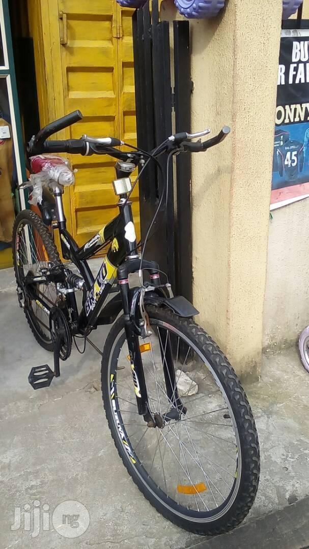 Adult Sports Bicycle