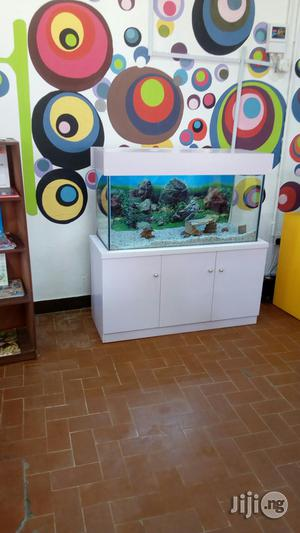 Ready Made Aquariums   Fish for sale in Lagos State, Ikeja