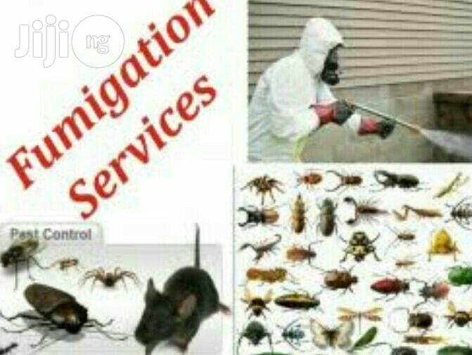 Fumigation Pest Control Services | Cleaning Services for sale in Surulere, Lagos State, Nigeria