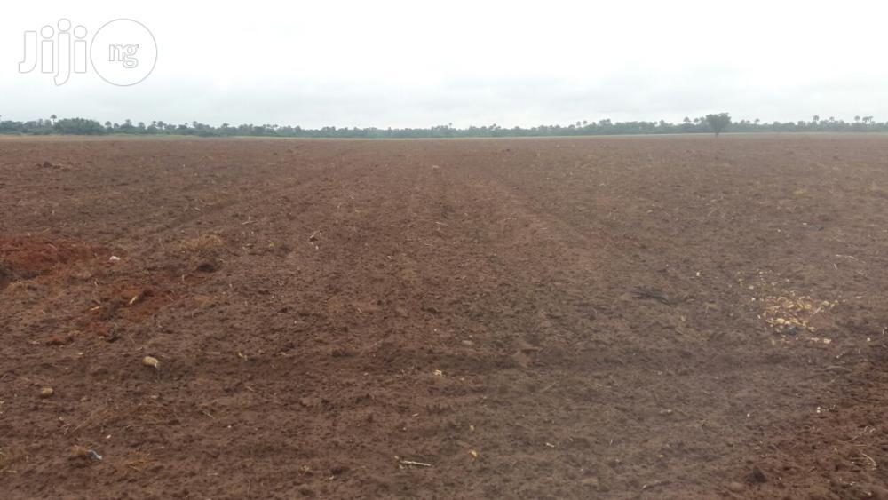 Fertile Farmlands for Rent Minimum of 4years