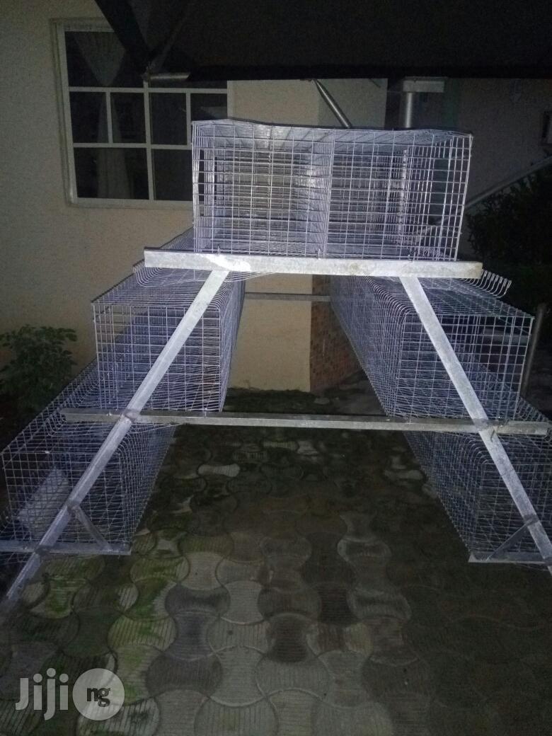 Thyinamic Pasture Nigeria Enterprise | Pet's Accessories for sale in Ido, Oyo State, Nigeria
