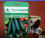 Hybrid Cucumber Seeds For Sale | Feeds, Supplements & Seeds for sale in Delta State, Warri