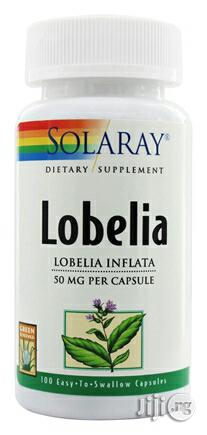 Lobelia for Asthma, Respiratory Problems and Quitting Smoking