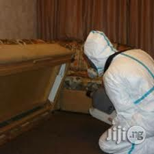 Deep Fumigation For Bed Bugs   Cleaning Services for sale in Lagos State, Surulere