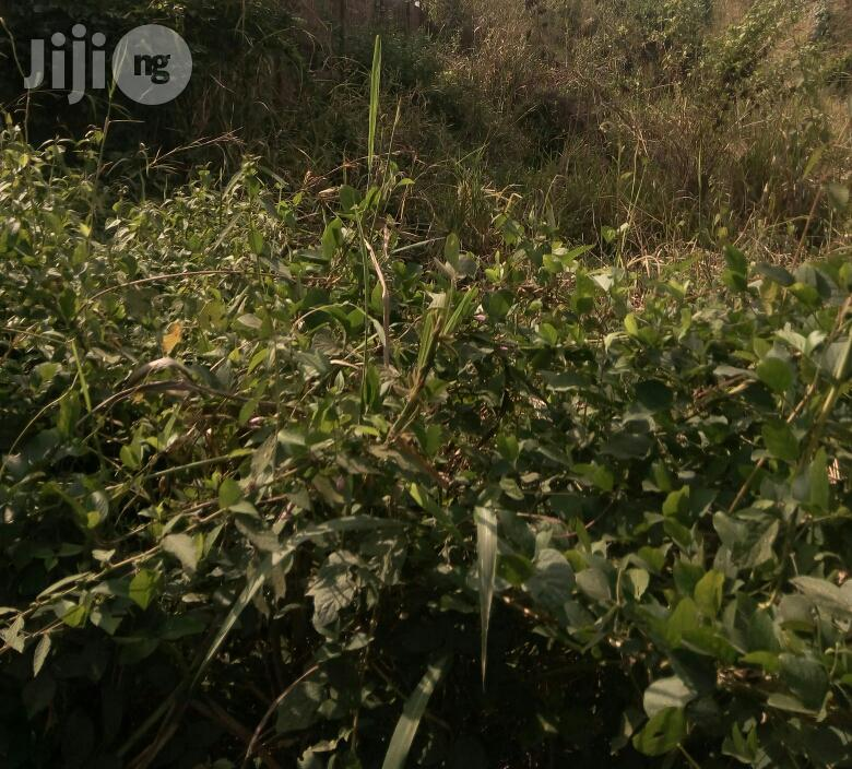 1000 Plot of Land for Sale in Awka North