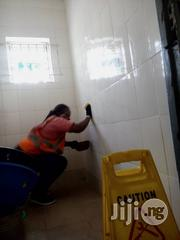 Washing Of Toilets And Bathrooms   Cleaning Services for sale in Lagos State, Lekki Phase 2