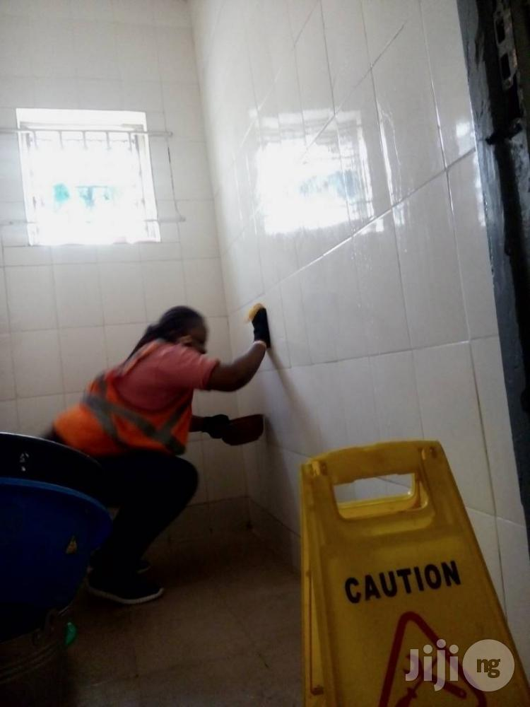 Archive: Washing Of Toilets And Bathrooms