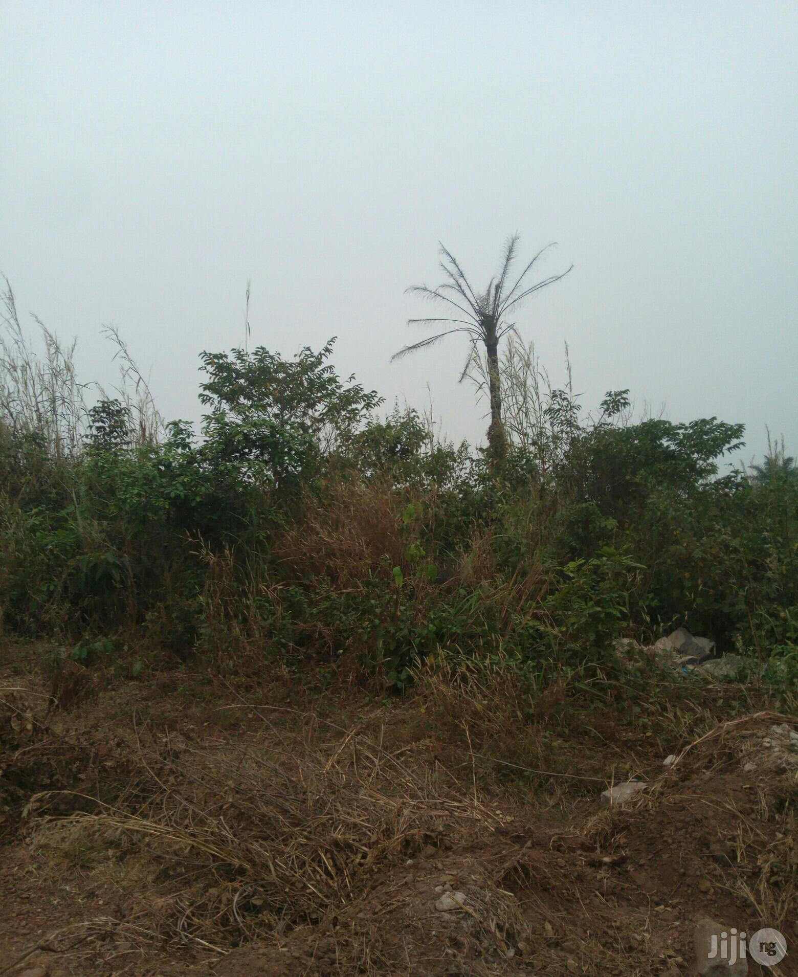 Survey Table Land 4sale Off Okpanam Road Entrance McDon's   Land & Plots For Sale for sale in Oshimili South, Delta State, Nigeria