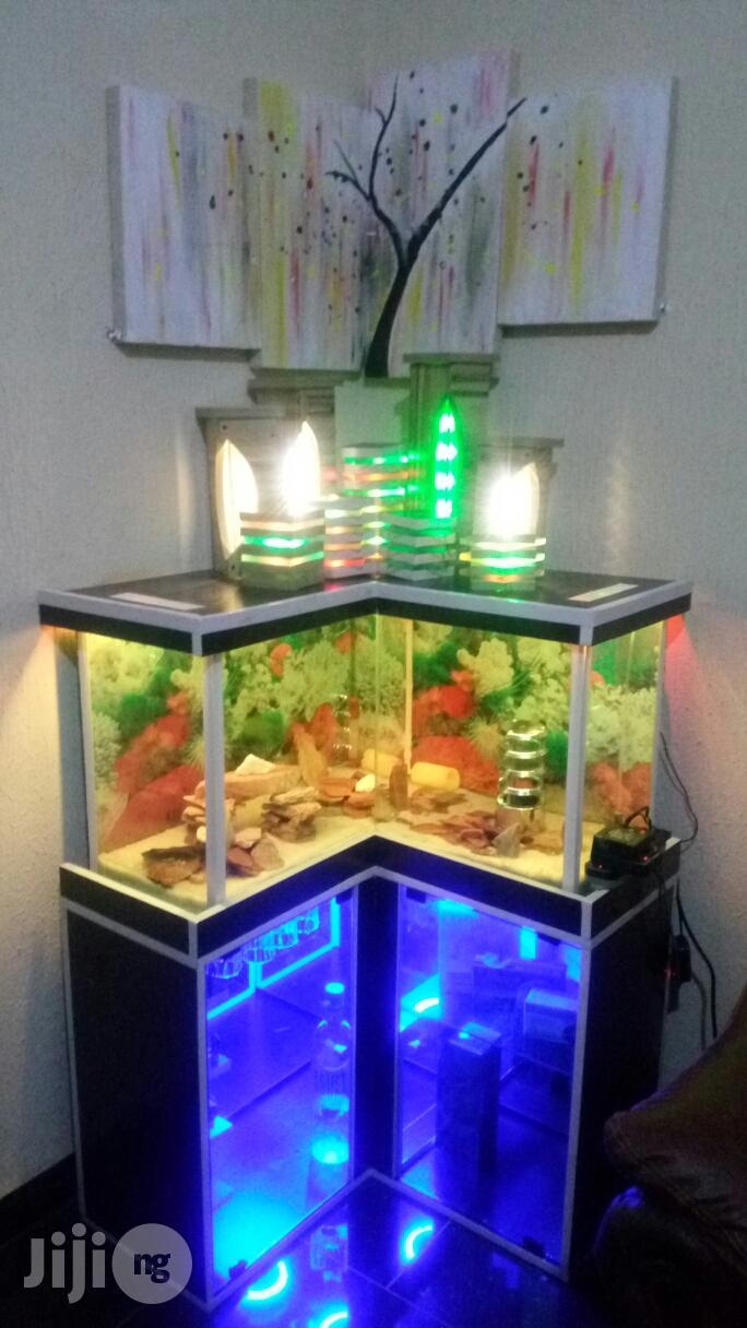 Aquarium With Wine Closet Brand New Functional