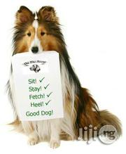 Dogsmart Dog Trainer In Port Harcourt | Dogs & Puppies for sale in Rivers State, Port-Harcourt
