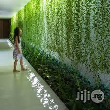 Aesthetic Wall Creeping Turf Giving Your Home A New Look