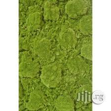 Affordable And Long Lasting Synthetic Wall Grass For Sale