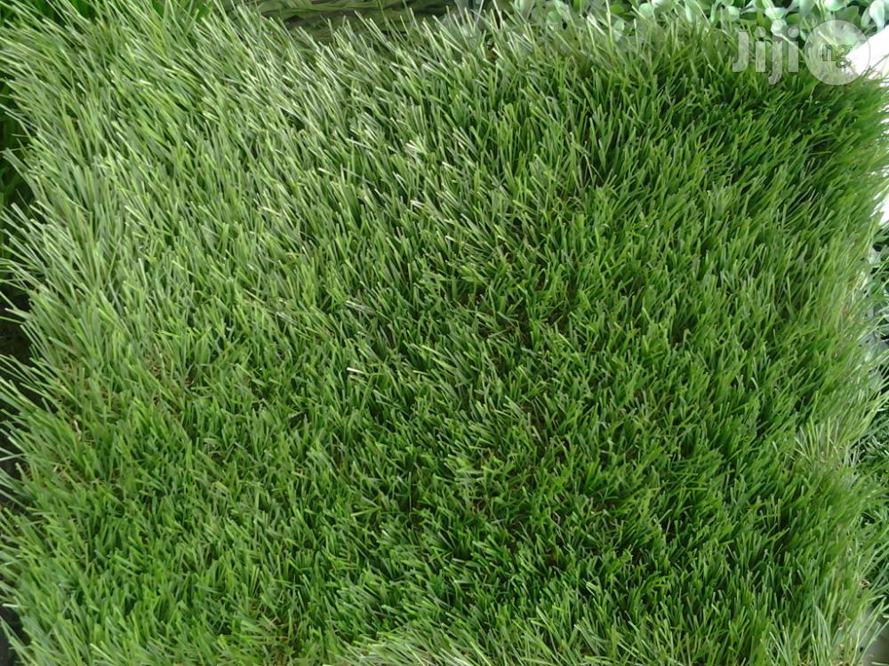 Natural Looking Synthetic Grass With Quality Texture for Sale