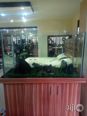 Aquarium So Adorable | Fish for sale in Lagos State, Ikeja