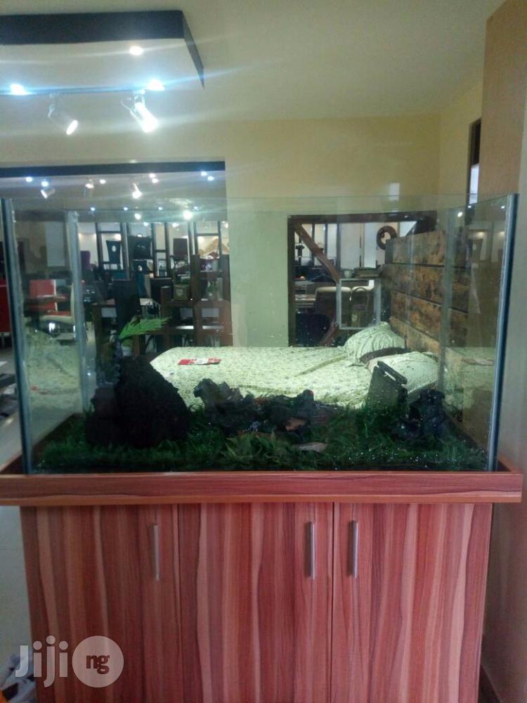 Aquarium So Adorable