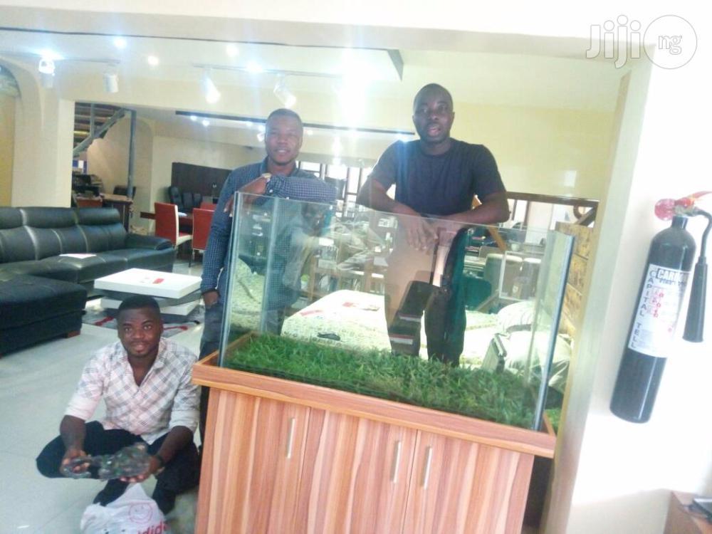 Aquarium So Adorable | Fish for sale in Ikeja, Lagos State, Nigeria