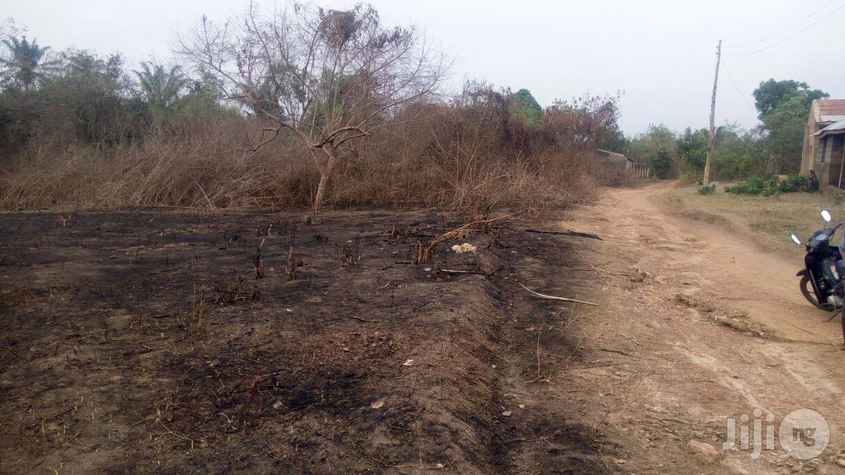 Archive: Plot Of Land At Alabata Moniya Ibadan