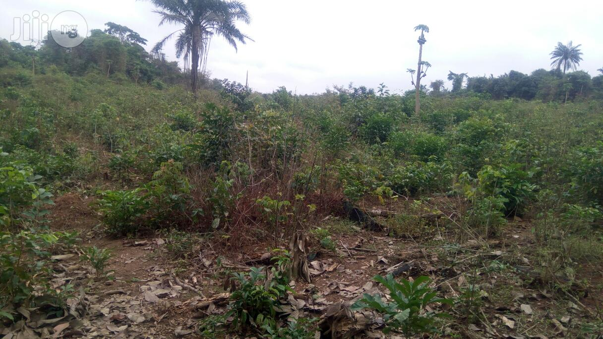 42 Acres Of Land At Otun Village Off Alabata Road Moniya Ibadan