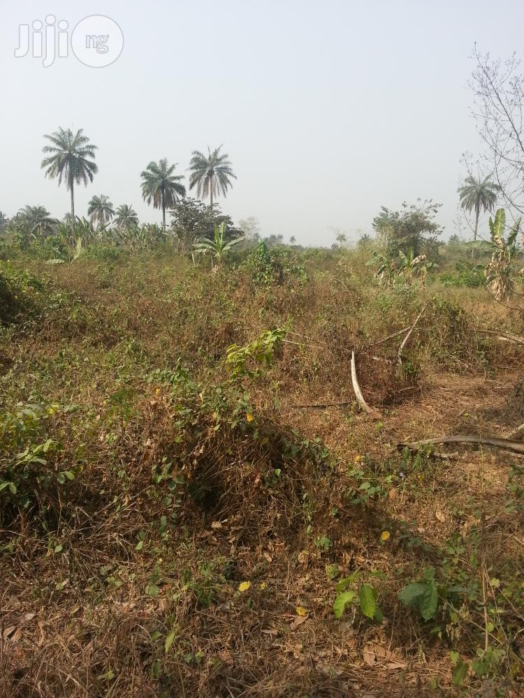 Buy Farm Land At Sokan Odeda