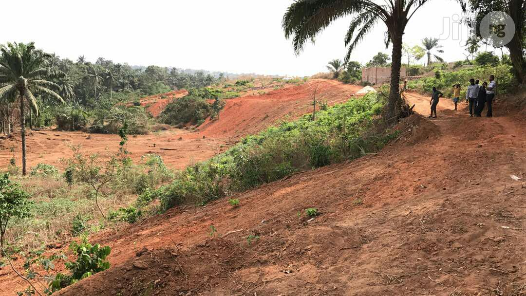 25 Plots of Land for Sale