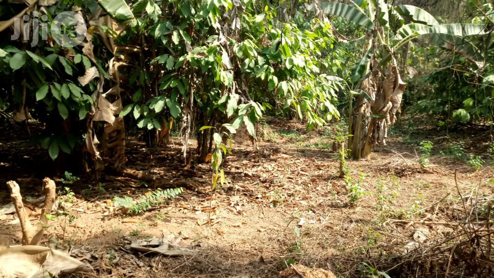 Farm Land For Sale | Land & Plots For Sale for sale in Odeda, Ogun State, Nigeria