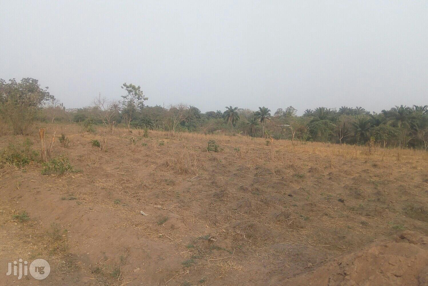 Archive: 50 Acres Of Farm Land For Lease At Igunrin Village Iseyin Ibadan Way