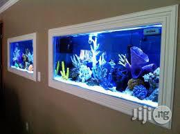 Home And Hotel Aquariums | Fish for sale in Imo State, Owerri