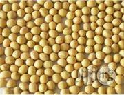 Soya Beans Seeds Organic Seeds For Planting | Garden for sale in Plateau State, Jos