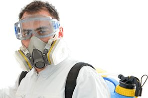 Fumigation Service & Pest Control Service | Cleaning Services for sale in Lagos State, Nigeria