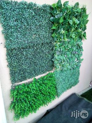 Reseller Needed For Wall Creeping Plant | Garden for sale in Lagos State, Ikeja