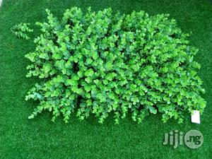 Artificial Wall Creeping Grass Plant Flower | Garden for sale in Lagos State, Ikeja