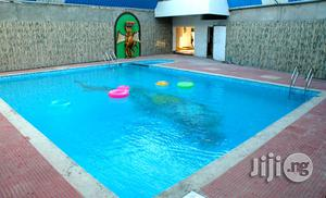 Swimming Pool Construction For Hotels | Building & Trades Services for sale in Abuja (FCT) State, Asokoro