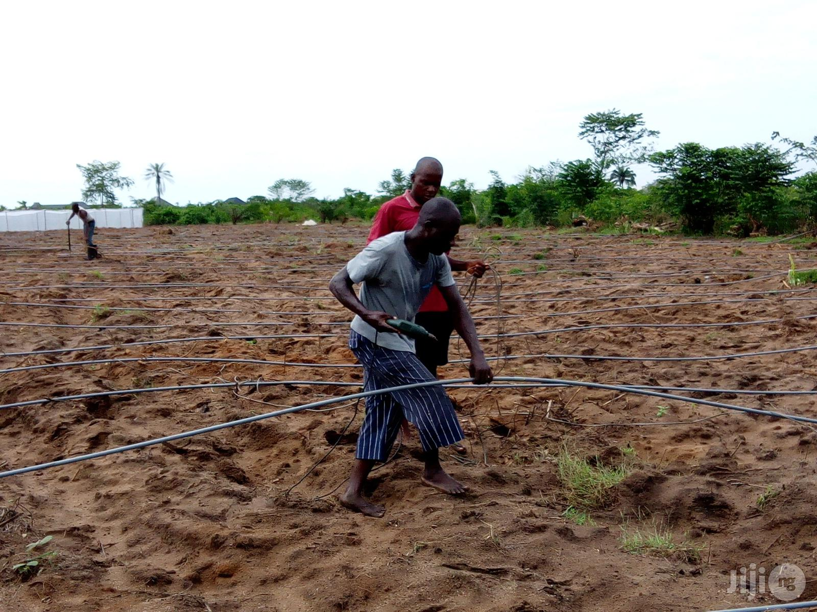 Drip Irrigation System Installation With Pvc Pipes Or Drip Tap | Building & Trades Services for sale in Uvwie, Delta State, Nigeria