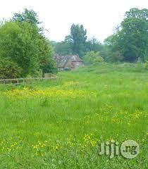 A Full Plot Of Land In A Good Location At Magboro With Genuine Doc