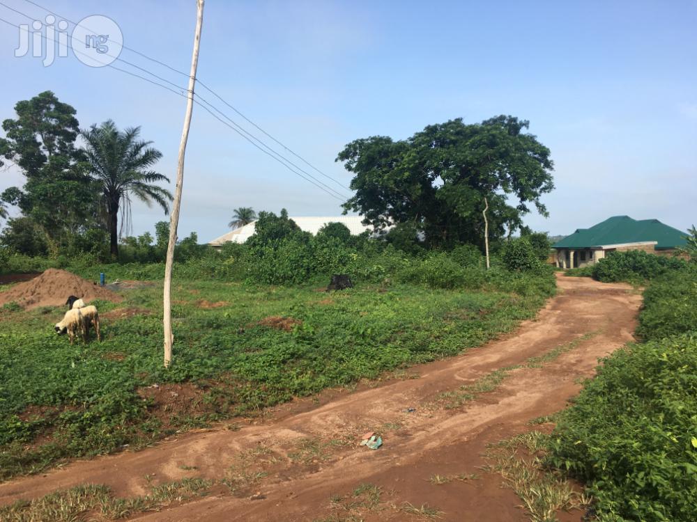 Archive: Plot Of Land At Olorisaoko/Molaire Area Moniya Ibadan
