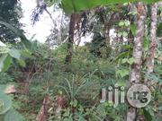 Plots of Land Beside University Okofia | Land & Plots For Sale for sale in Anambra State, Nnewi