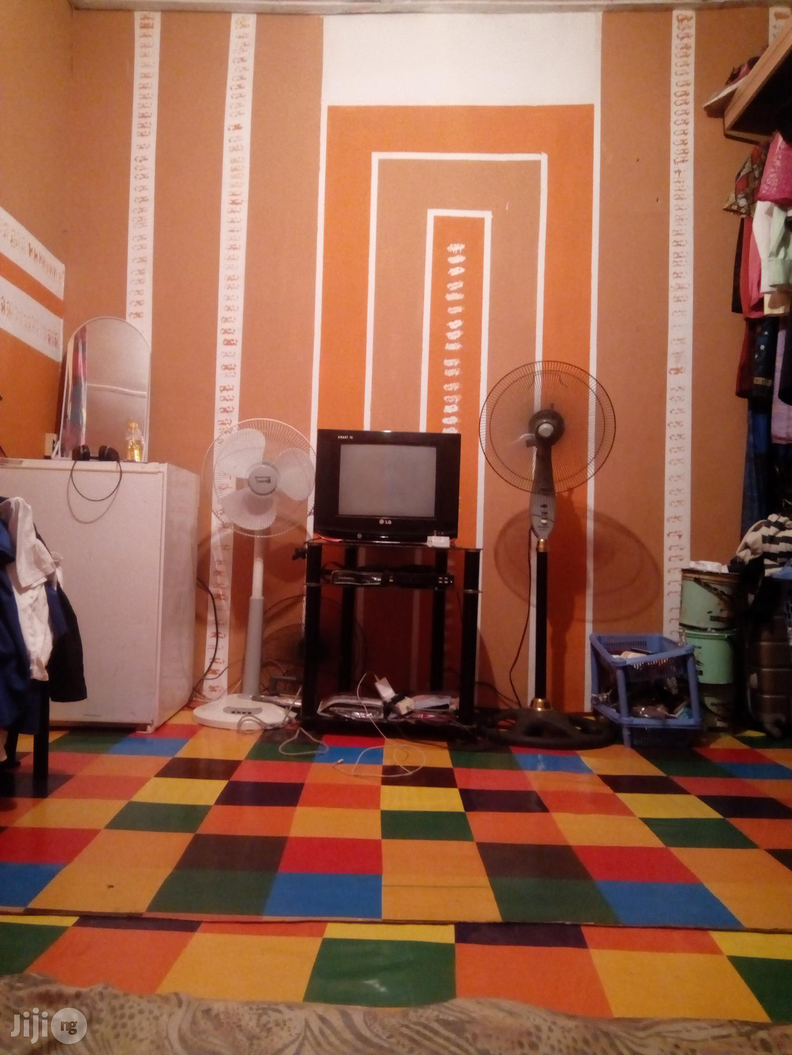 Professional House Painter With Interior Decorations
