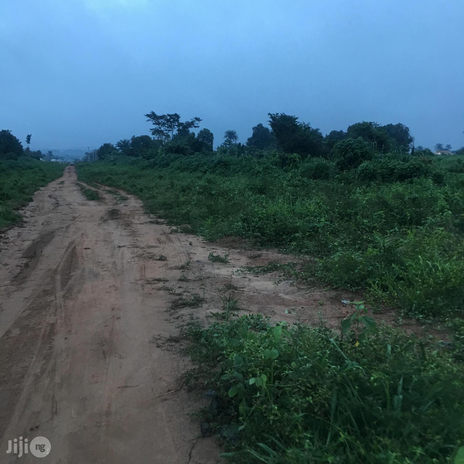 100 Acres Farm Land Off Elekuru Ijaye Road Elekuru Moniya Ibadan