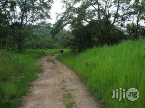 1 Acre of Land for Sale at Ota, Ogun State. | Land & Plots For Sale for sale in Ogun State, Ado-Odo/Ota