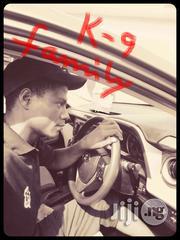 Abubakar Muhammed | Driver CVs for sale in Gombe State, Balanga