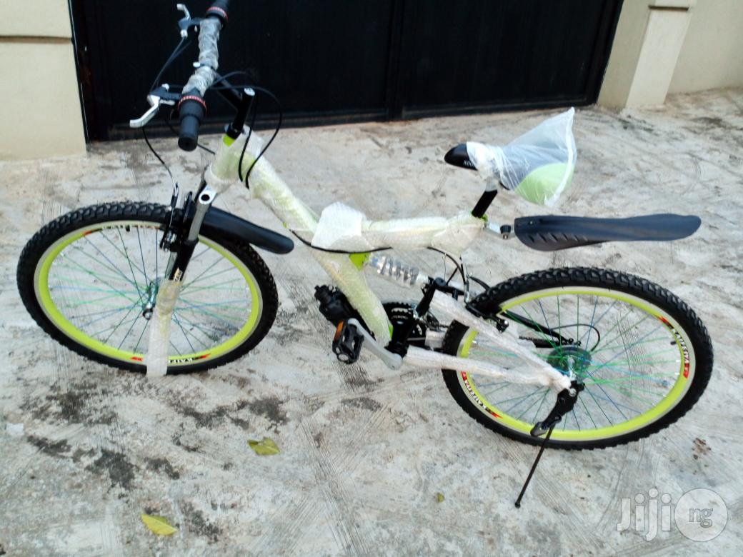 Bicycle Adult