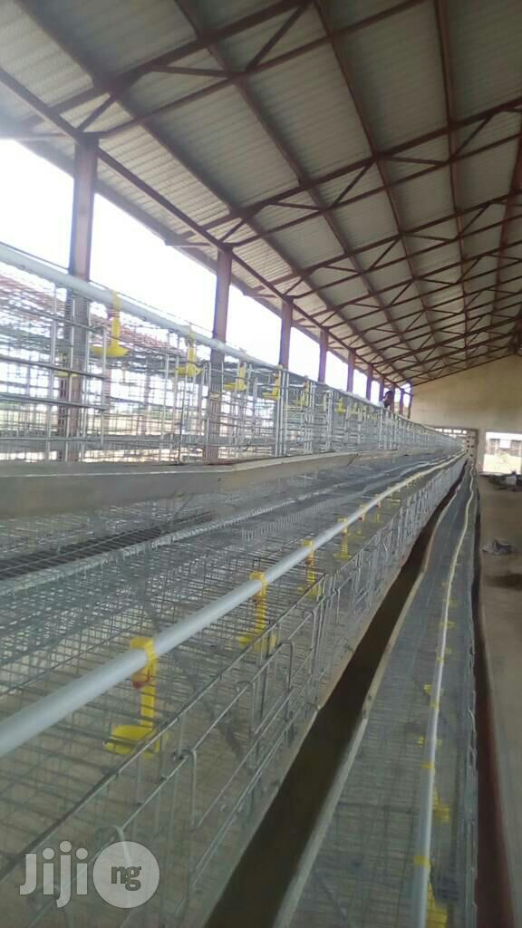 Galvanized Battery Cage