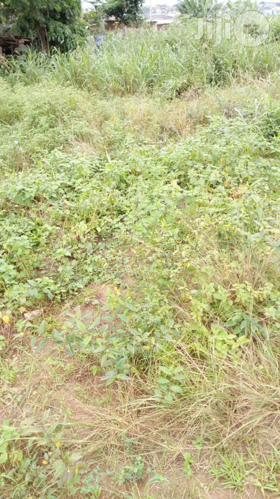 Farmlands For Lease