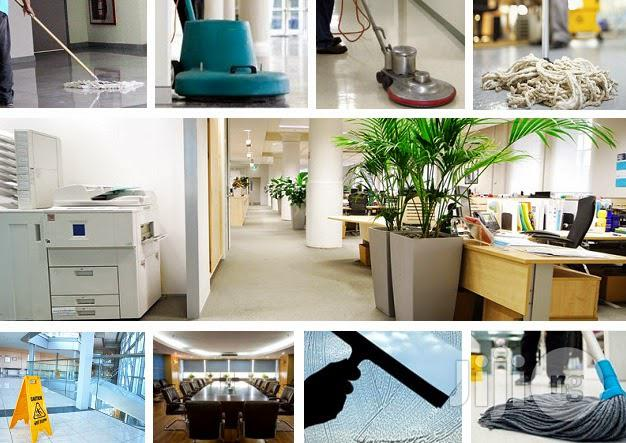 Archive: Professional Cleaning Service