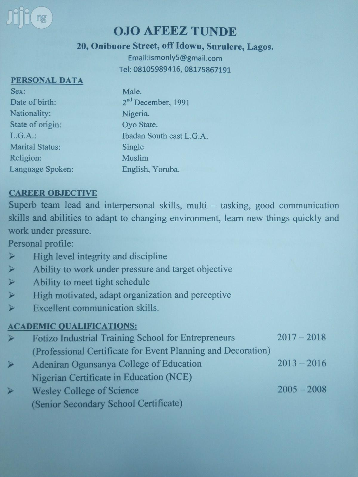 Secondary and Primary School Teacher | Teaching CVs for sale in Surulere, Lagos State, Nigeria