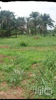 2 Plots of Land | Land & Plots For Sale for sale in Anambra State, Nnewi