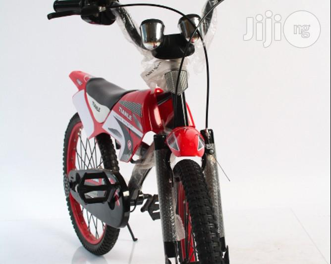 Modern Bicycle for Kids (Red Blue)